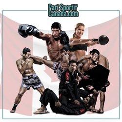 mixed-martial-arts-organisation-histoire